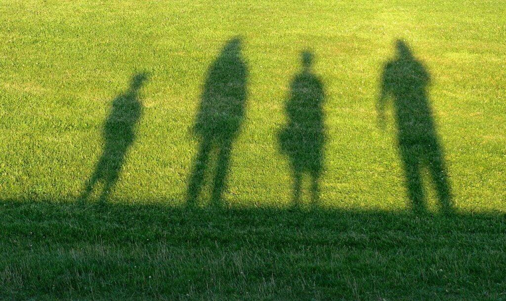 Nurty psychoterapii - nurt systemowy